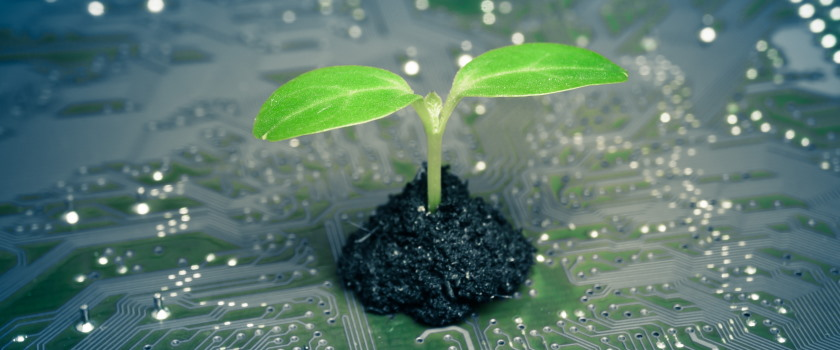Green plant growing from a circuit board representing sustainability in tech